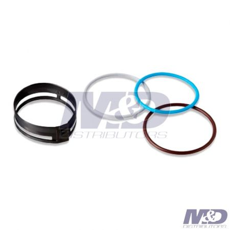 Delphi Celect Injector O-Ring Kit with Filter