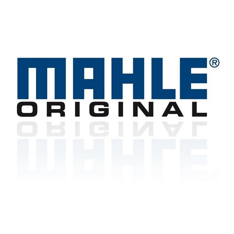 Mahle Original Standard Piston & Rings