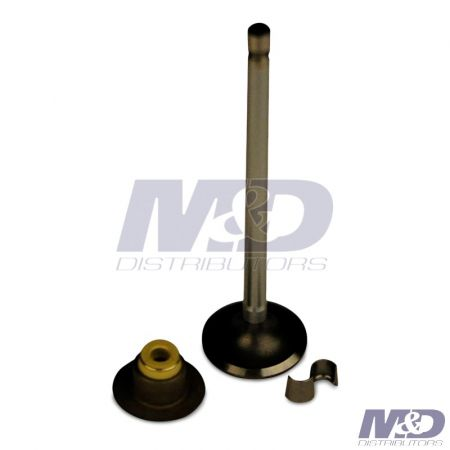 Cummins Intake Valve Kit